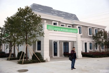 china-3d-printed-mansion-and-tower-block-photo-1