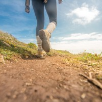 Take a Hike, Huntsville: Trails To Explore In Your Own Backyard